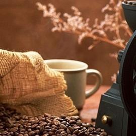 Кофеин влияет на развитие эмбриона