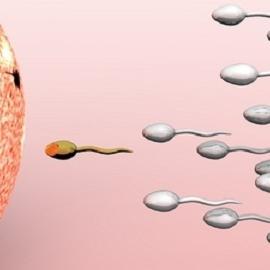 Менее половины бесплодных корейцев обращаются за лечением