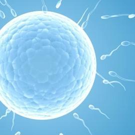 В Британии растет потребность в донорах спермы