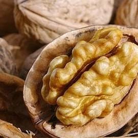 Грецкие орехи улучшают качество спермы