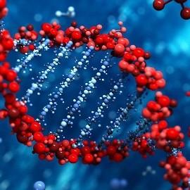 Эндометриоз вызывают изменения в ДНК клеток матки