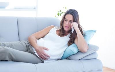 Стресс матерей влияет на фертильность сыновей