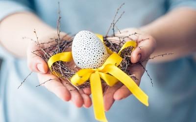 Как решиться на донора яйцеклеток?