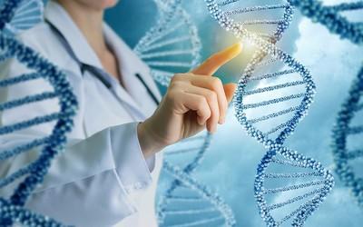 Подобрать ключ к геному