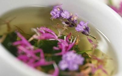 Травы, понижающие андрогены — на что способны растения при бесплодии