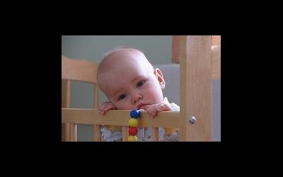 сайт детей на усыновление или опеку фото - фото 7