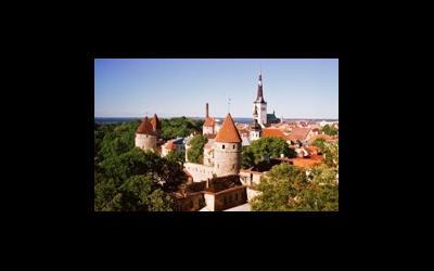 Эстония может узаконить сурматеринство