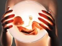 Советы после переноса эмбрионов