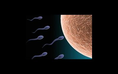 Искусственная инсеминация - один из методов репродуктивных технологий