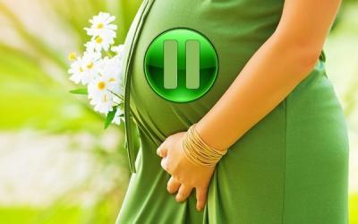 Можно ли поставить на паузу … беременность?