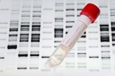Тест ДНК может улучшить показатели успеха ЭКО до 80%