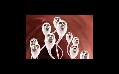 Англия столкнулась с дефицитом доноров спермы