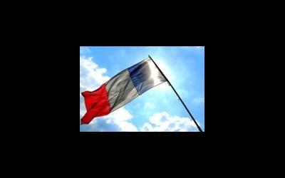 Французам облегчат доступ к программам суррогатного материнства?