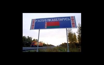 Беларусь вводит генетическую экспертизу при сурматеринстве