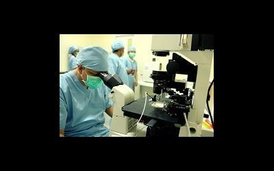 Хирургическое извлечение спермы и его эффективность для ИКСИ