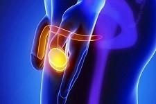 слабая эрекция боль в яичках снизу