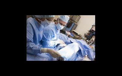 Эффективность криоконсервации тканей яичника
