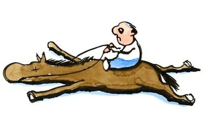 «Когда мы говорим об ЭКО, это мы плеткой хлещем лошадь»