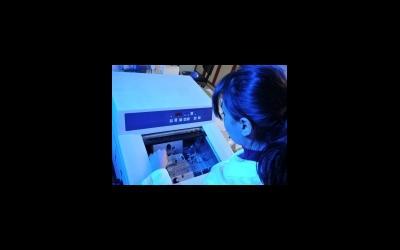 Заморозка - непростой и пока недостаточно эффективный метод сохранения яйцеклеток