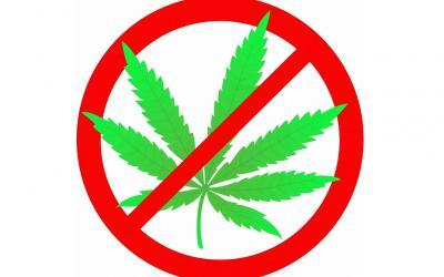 И снова о марихуане