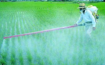 Пестициды приводят к женскому бесплодию
