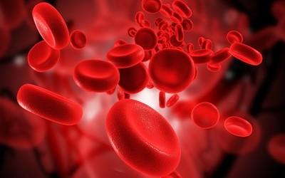 Что такое протромбиновый индекс и его норма
