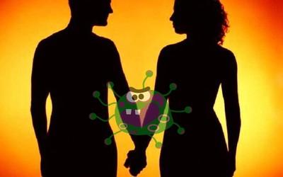 Вирус секса