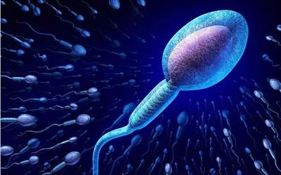 Методы диагностики мужского бесплодия