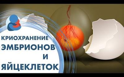 Embedded thumbnail for  Как влияет криоконсерация на качество эмбрионов?