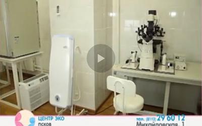 Embedded thumbnail for «ЭКО теперь делают и в Пскове»
