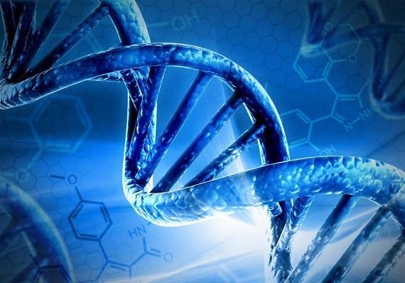 В Китае родились генетически модифицированные близнецы