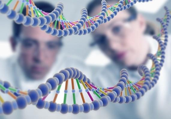 Найден белок, отвечающий за мужское бесплодие