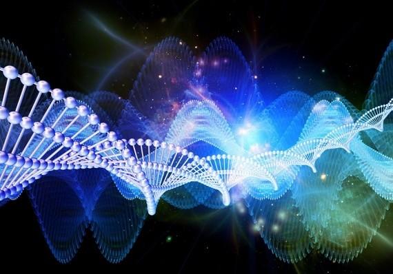 Изменения в ДНК ребенка зависят от срока беременности