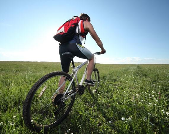 Поварам и велосипедистам угрожает бесплодие