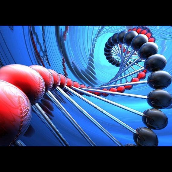 Новая комбинация генов позволит увеличить эффективность ЭКО